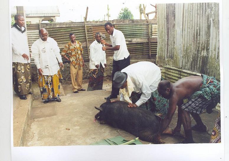 mokako%20Gobina%204 Bakweri People:  Ancient Fierce Fighters, Traditionally Spiritual, Custom-Abiding And Agrarian Bantu People Of Mount Cameroon